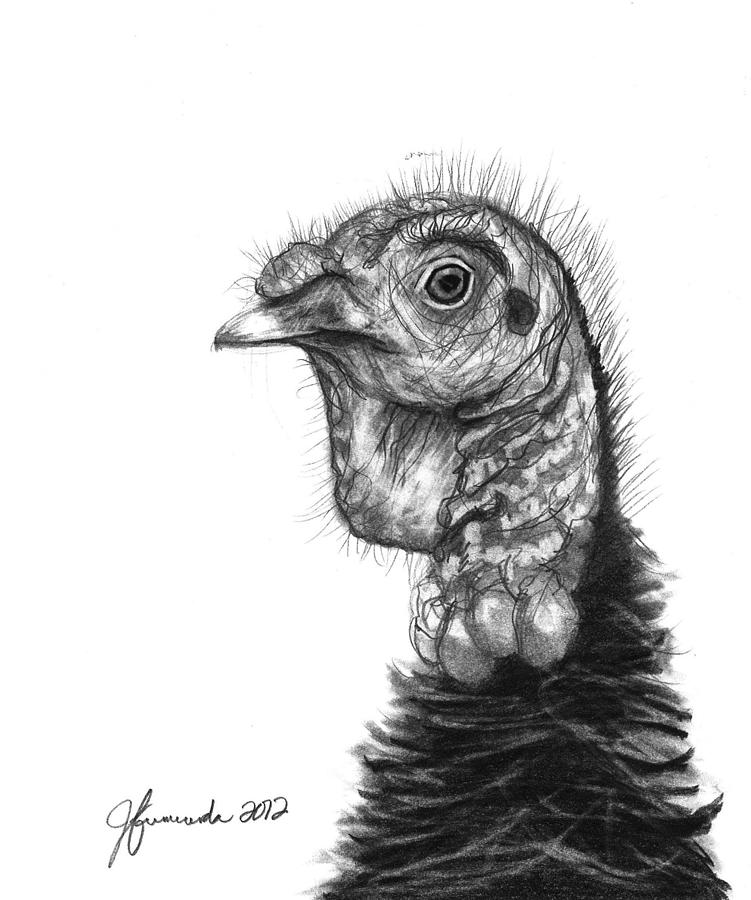 turkey drawing color me thanksgiving turkey by kernyeah on deviantart drawing turkey