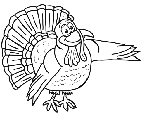 turkey drawing illinois whitetail services llc pencil drawing gallery turkey drawing