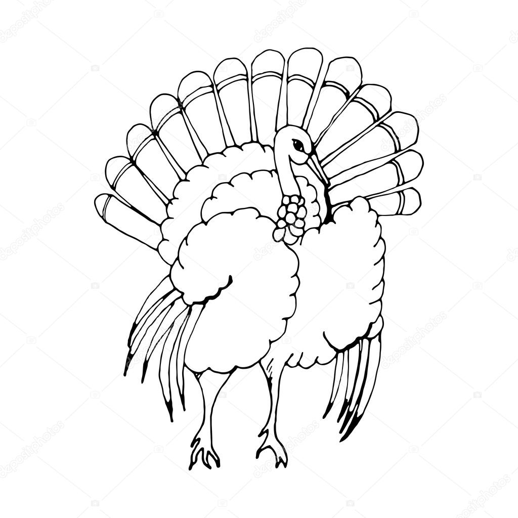 turkey drawing library of turkey drawings graphic free library png files turkey drawing