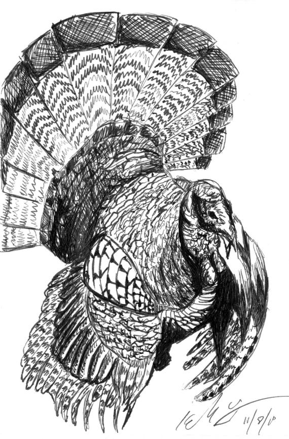 turkey drawing turkey drawing for thanksgiving at getdrawings free download drawing turkey