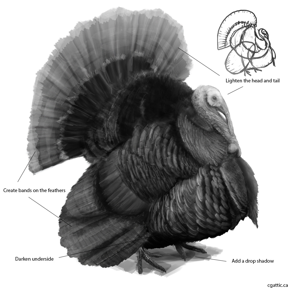 turkey drawing wild turkey drawing by roy anthony kaelin drawing turkey