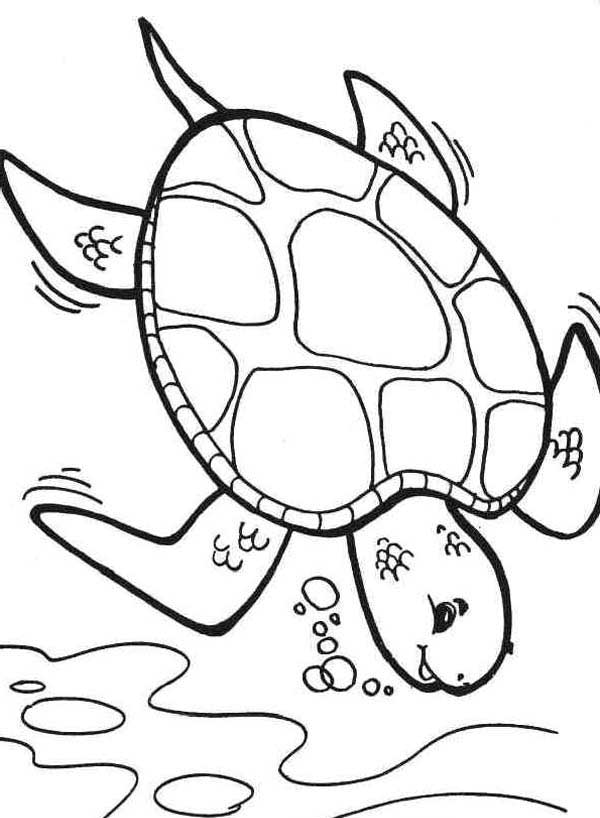 turtle coloring images diving deeper sea turtle coloring page download print turtle coloring images
