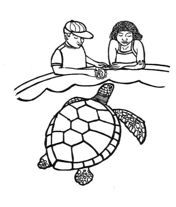 turtle coloring images feeding sea turtle coloring page download print online coloring images turtle