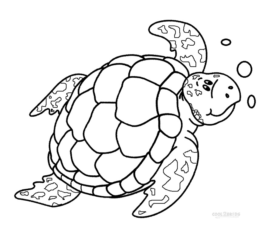 turtle coloring images printable sea turtle coloring pages for kids coloring turtle images