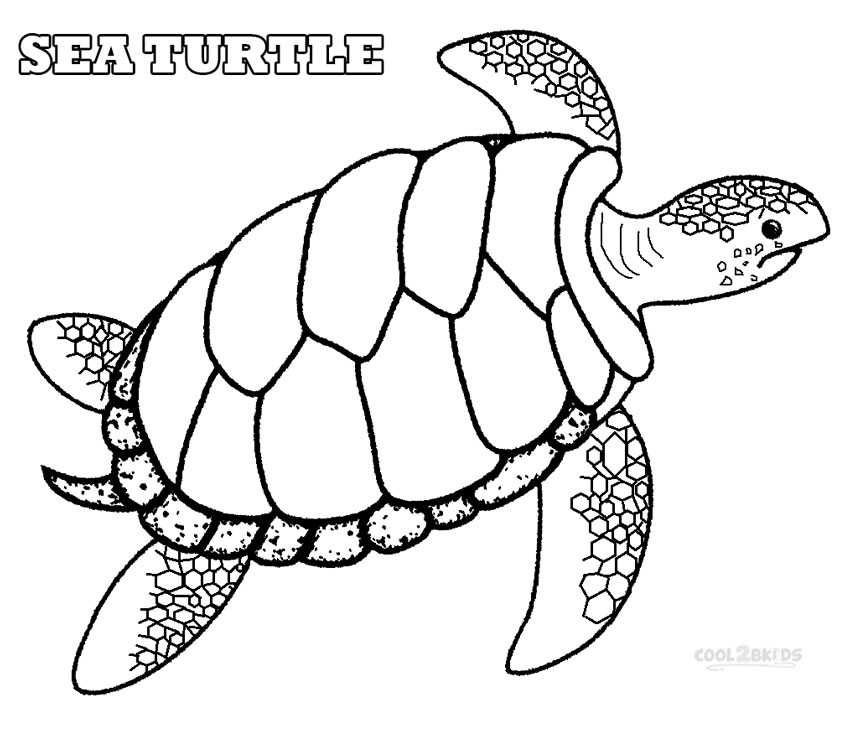 turtle coloring images printable sea turtle coloring pages for kids turtle images coloring