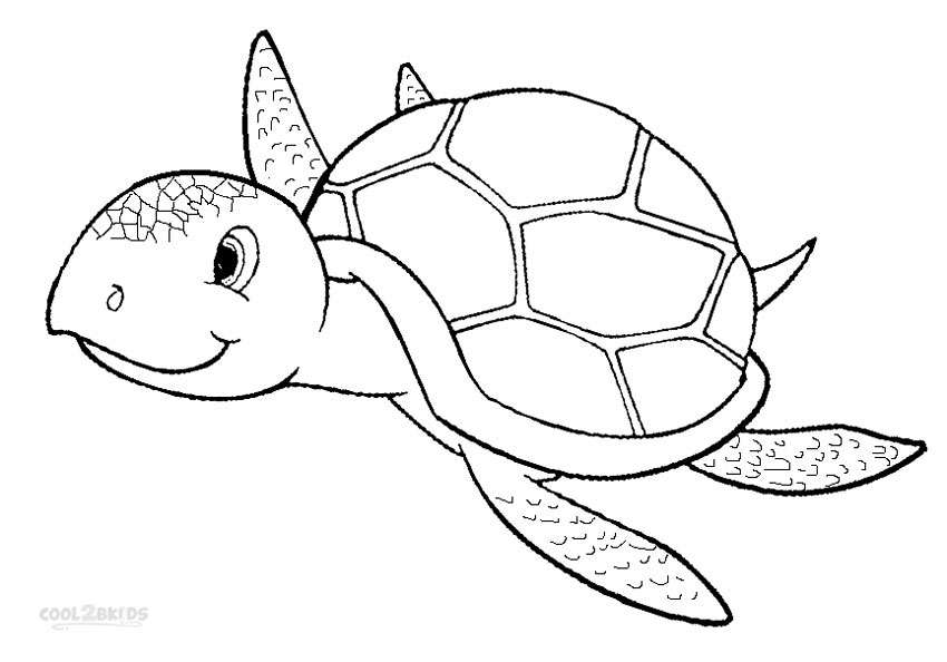 turtle coloring images sea turtle coloring pages kidsuki coloring turtle images