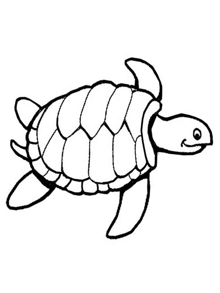 turtle coloring images turtles coloring pages download and print turtles turtle coloring images 1 1