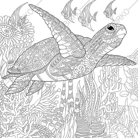 turtle coloring pages for adults 17 best images about color my world on pinterest turtle coloring for adults pages