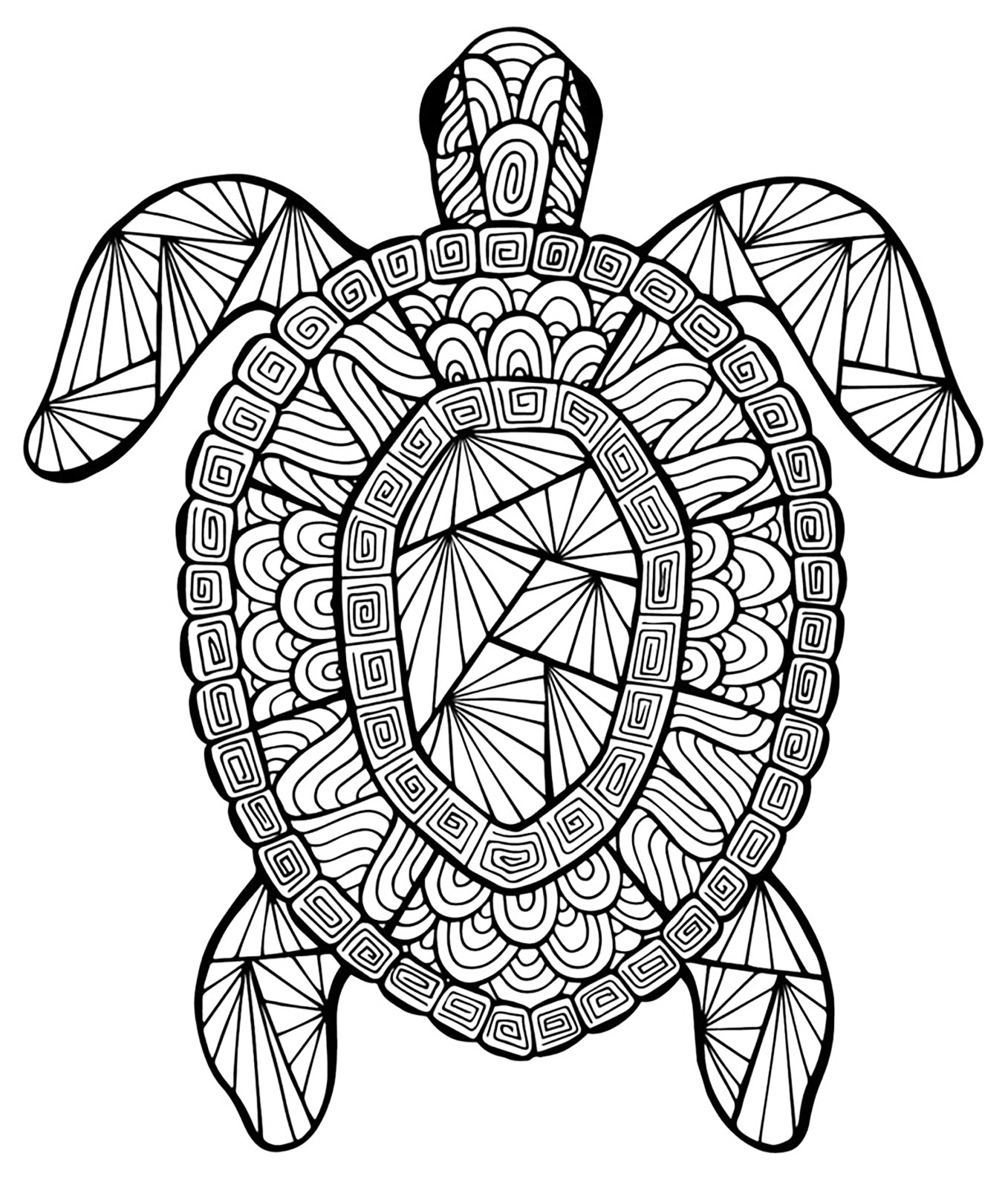 Turtle coloring pages for adults