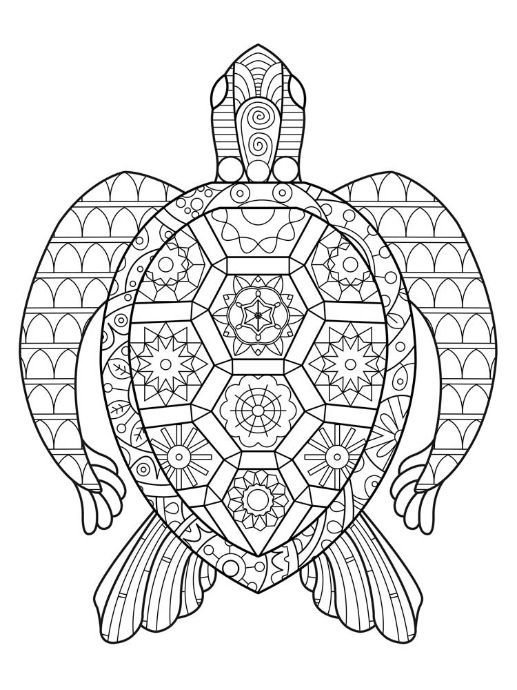 turtle coloring pages for adults adult coloring pages turtle at getcoloringscom free adults coloring turtle pages for