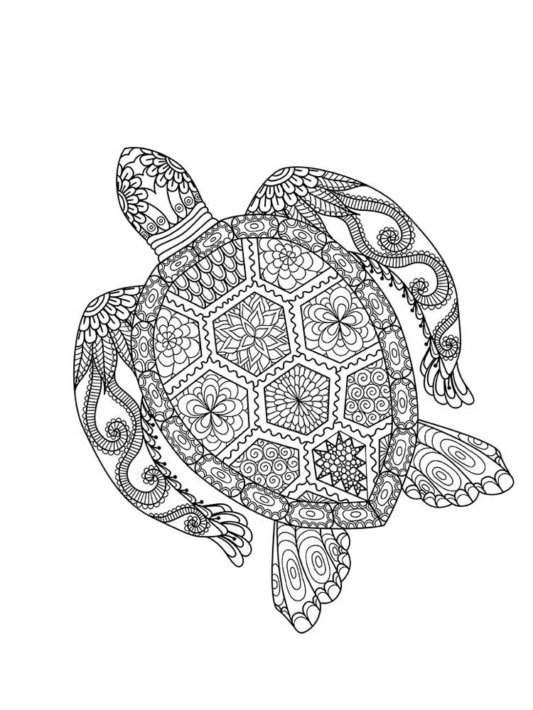 turtle coloring pages for adults free turtle coloring pages for adults printable to adults coloring turtle pages for