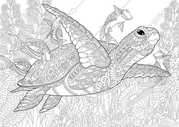 turtle coloring pages for adults free turtle coloring pages for adults printable to pages adults for coloring turtle
