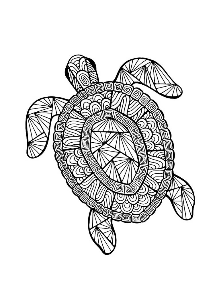 turtle coloring pages for adults free turtle coloring pages for adults printable to pages turtle coloring for adults