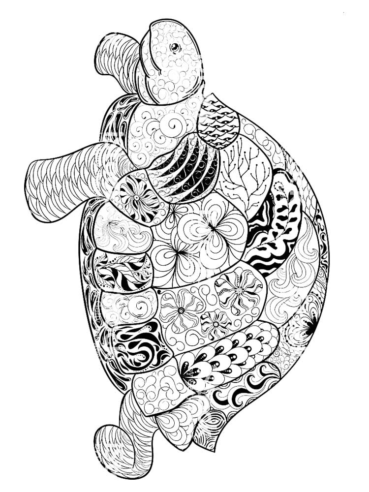 turtle coloring pages for adults pattern for coloring book decorative graphic turtle for adults pages coloring turtle
