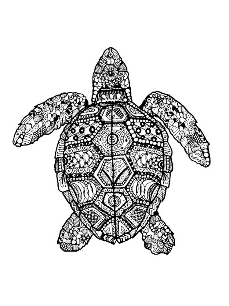 turtle coloring pages for adults turtle adult colouring page colouring in sheets art adults turtle pages for coloring