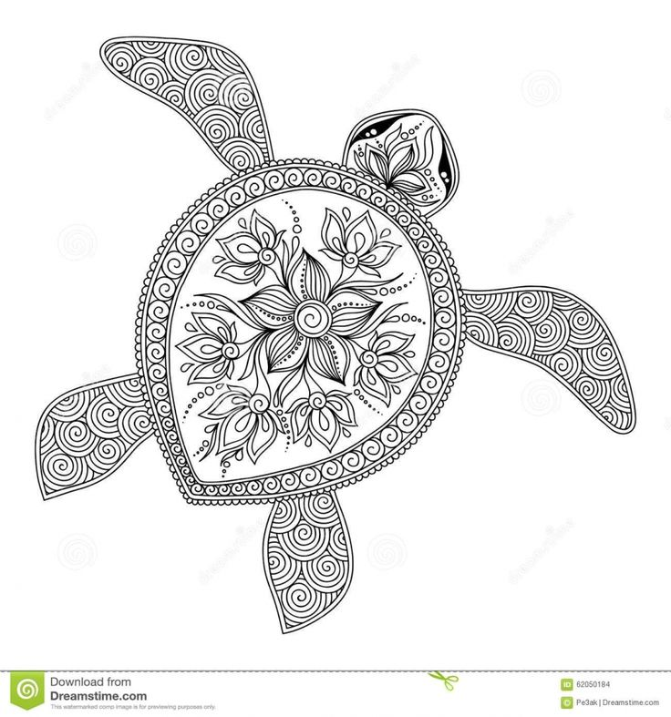 turtle coloring pages for adults turtle coloring pages for adults for turtle coloring adults pages