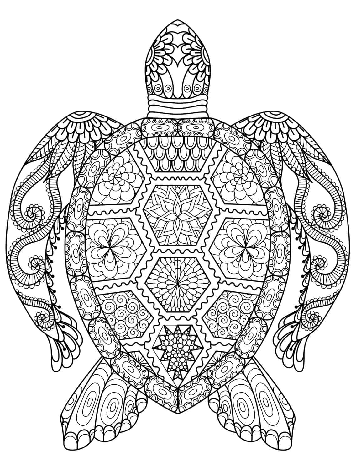 turtle coloring pages for adults turtle coloring pages for kids and adults 101 coloring turtle adults for coloring pages