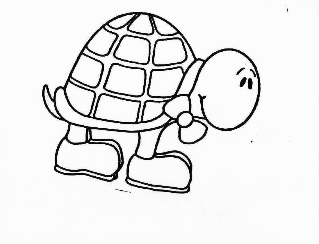 turtles colouring 19 turtle templates crafts colouring pages free colouring turtles