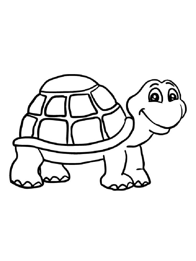 turtles colouring coloring pages turtles free printable coloring pages colouring turtles 1 1