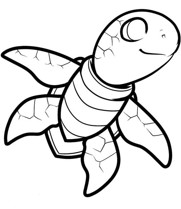turtles colouring turtle coloring pages coloring pages to download and print colouring turtles