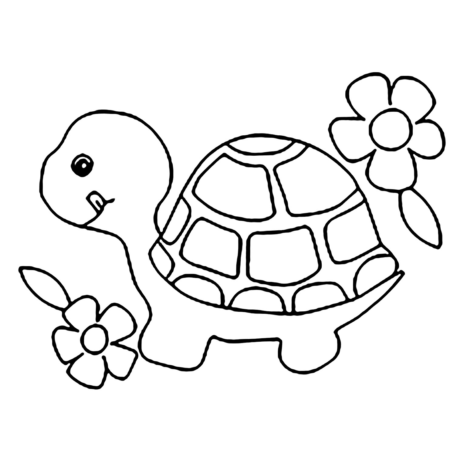 turtles colouring turtle hatchling illustrations royalty free vector turtles colouring