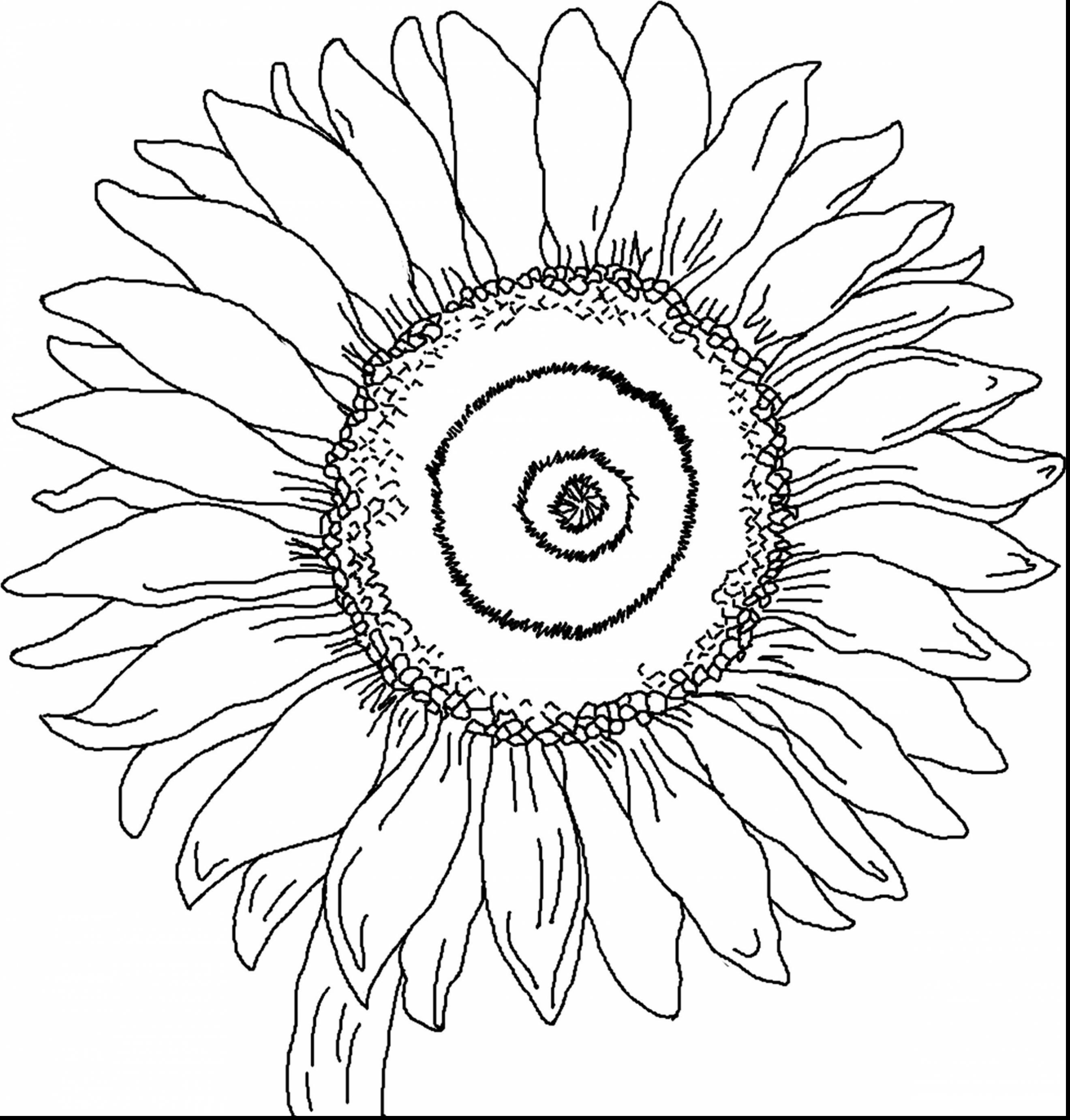 Van gogh sunflowers coloring page