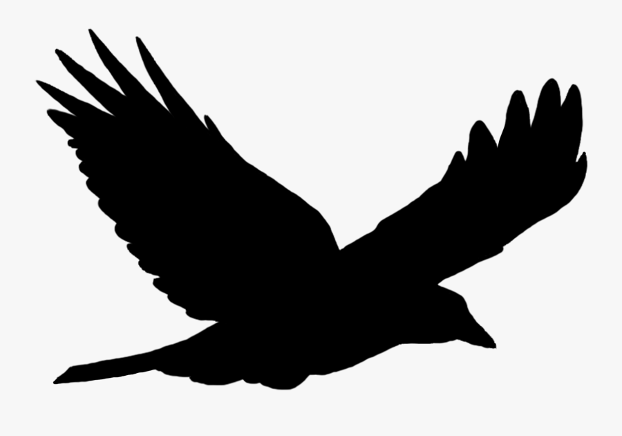 vulture silhouette turkey vulture silhouette at getdrawings flying bird silhouette vulture