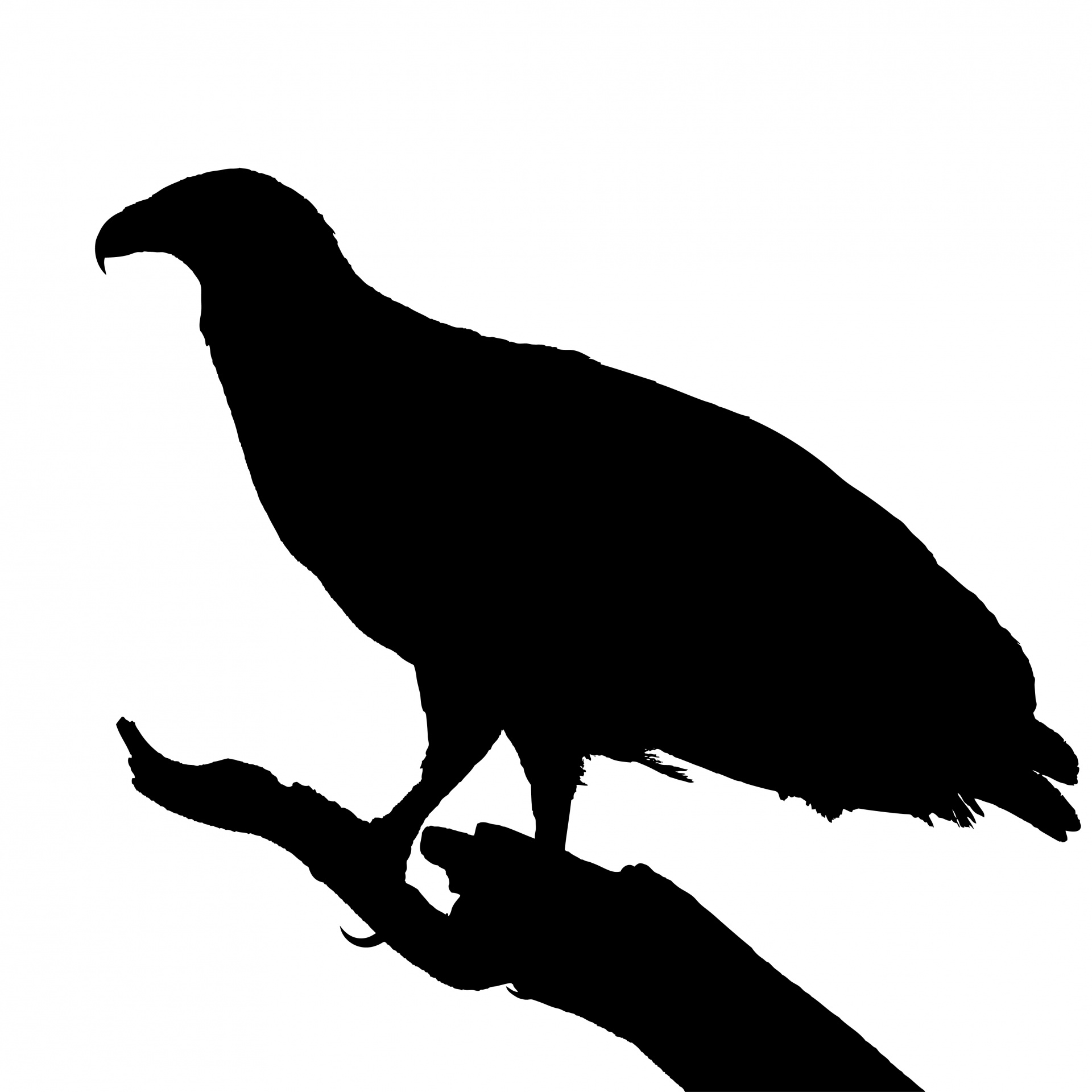 vulture silhouette turkey vulture silhouette at getdrawings free download silhouette vulture
