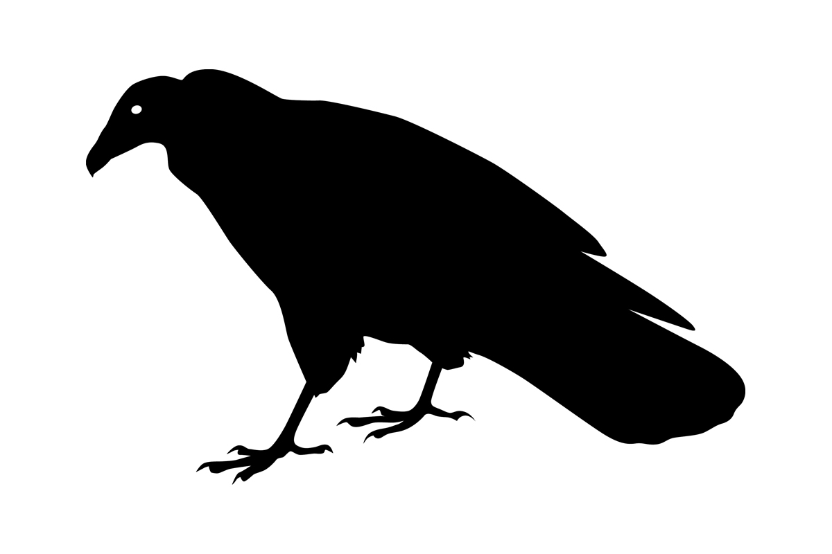 vulture silhouette vulture silhouette silhouette photo ink silhouette vulture