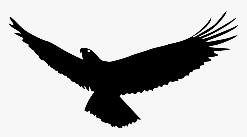vulture silhouette vulture vector wing flying eagle silhouette png silhouette vulture