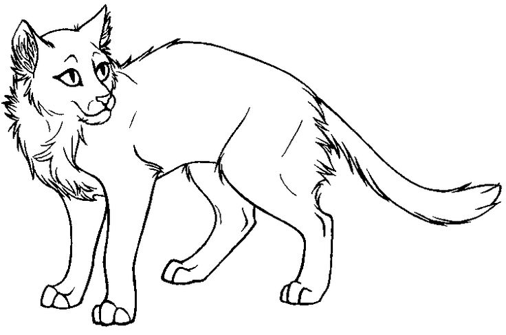 warrior cat coloring pages free warrior cats coloring pages download and print warrior coloring cat pages