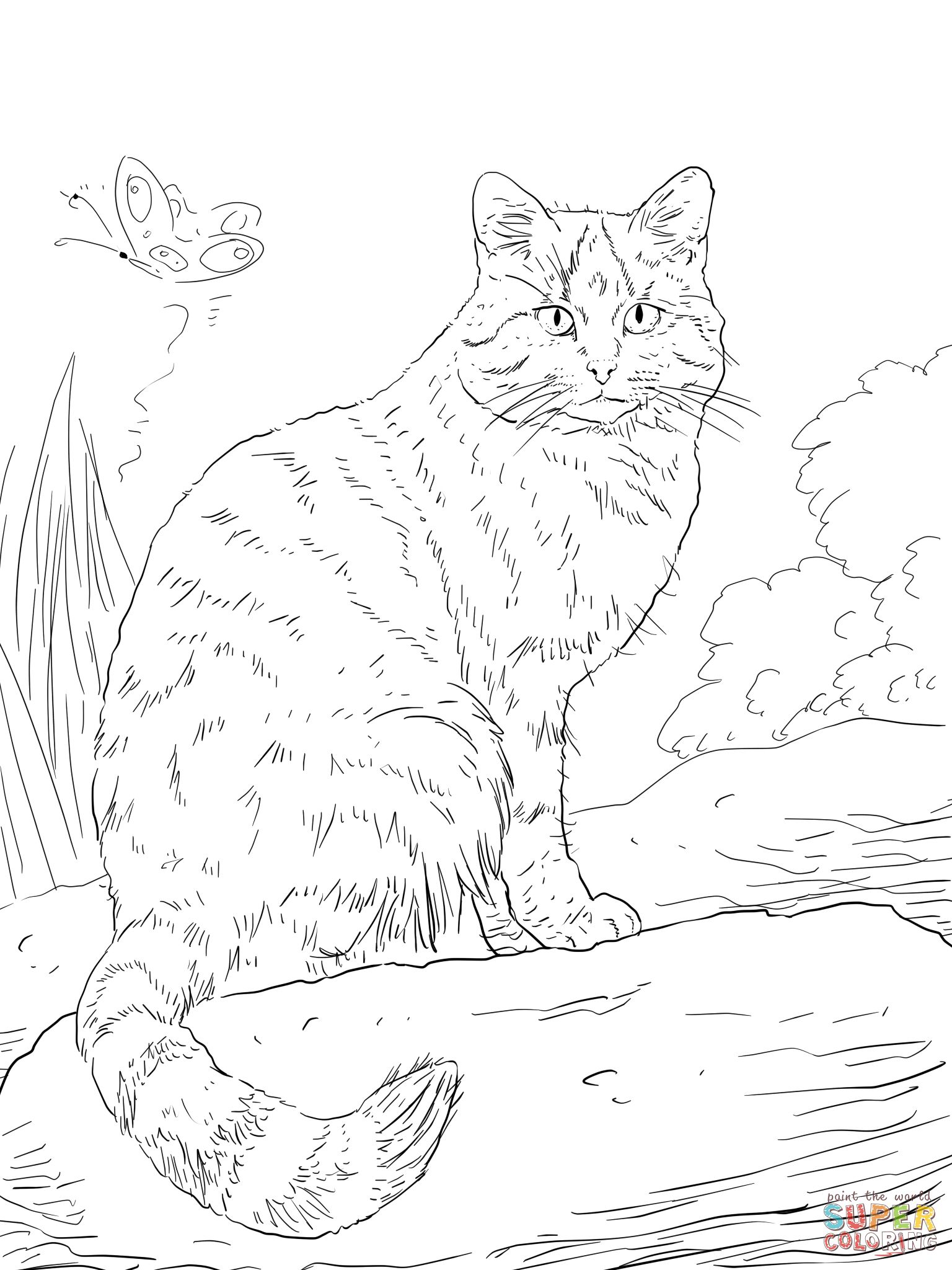 wild cat coloring pages asian golden cat diy printable wild cat coloring page pages cat wild coloring