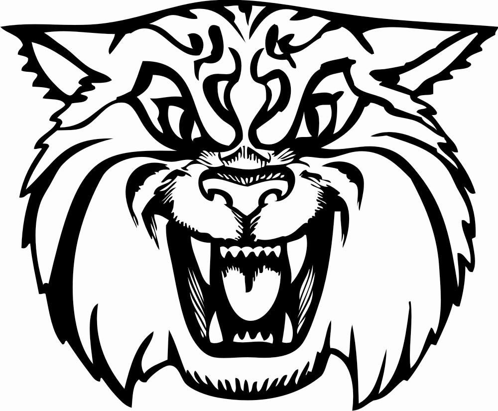 wild cat coloring pages european wild cat coloring pagewild cats coloring pages cat wild coloring pages