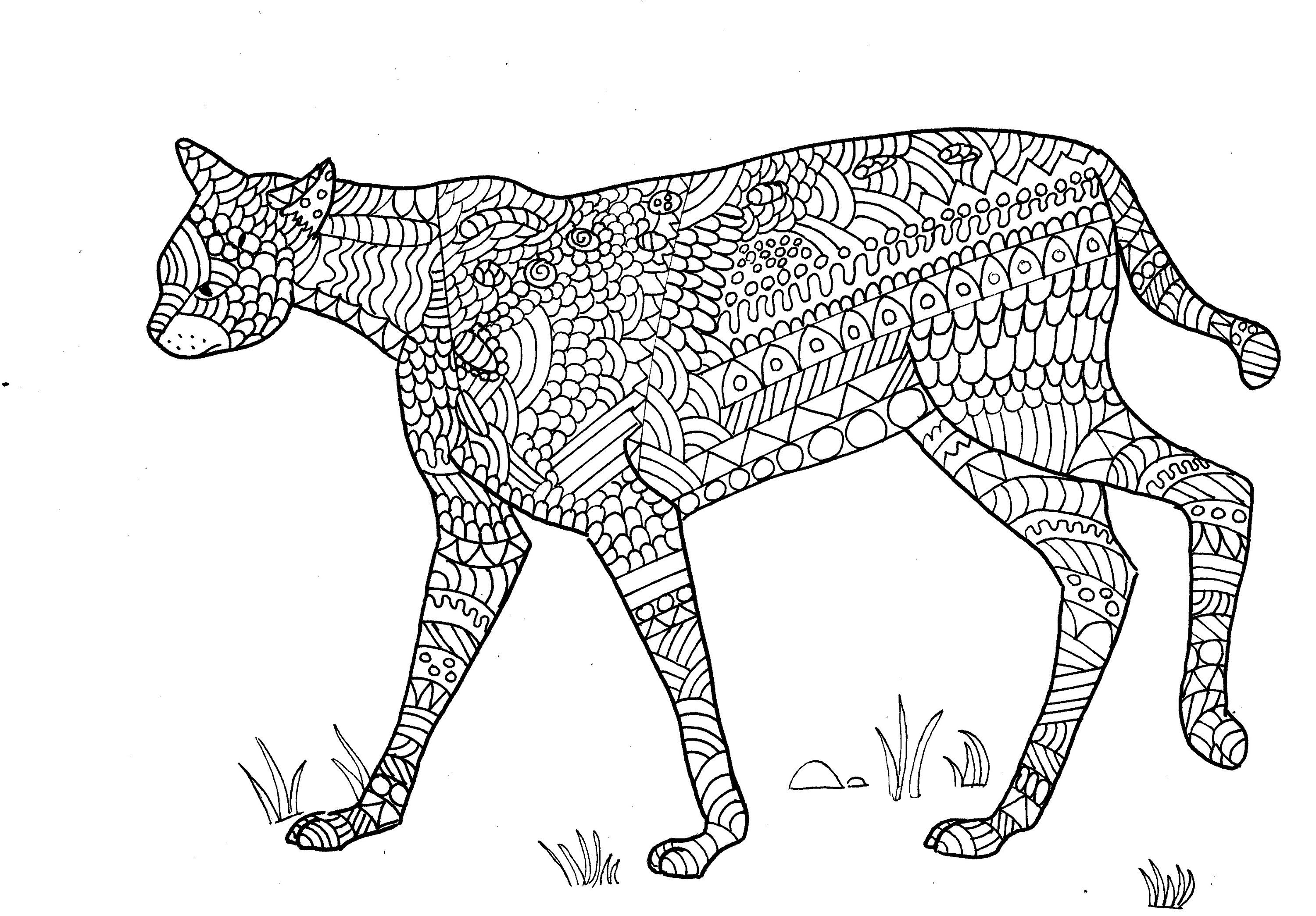 wild cat coloring pages go wild cats coloring page twisty noodle cat wild coloring pages