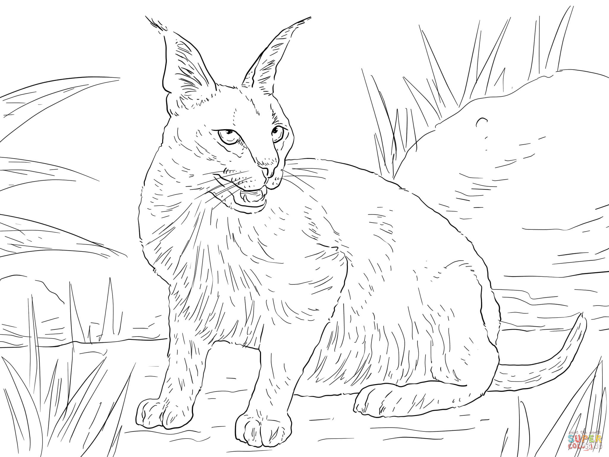 wild cat coloring pages hard owl coloring pages tiger liked wild cat in the wild coloring cat wild pages