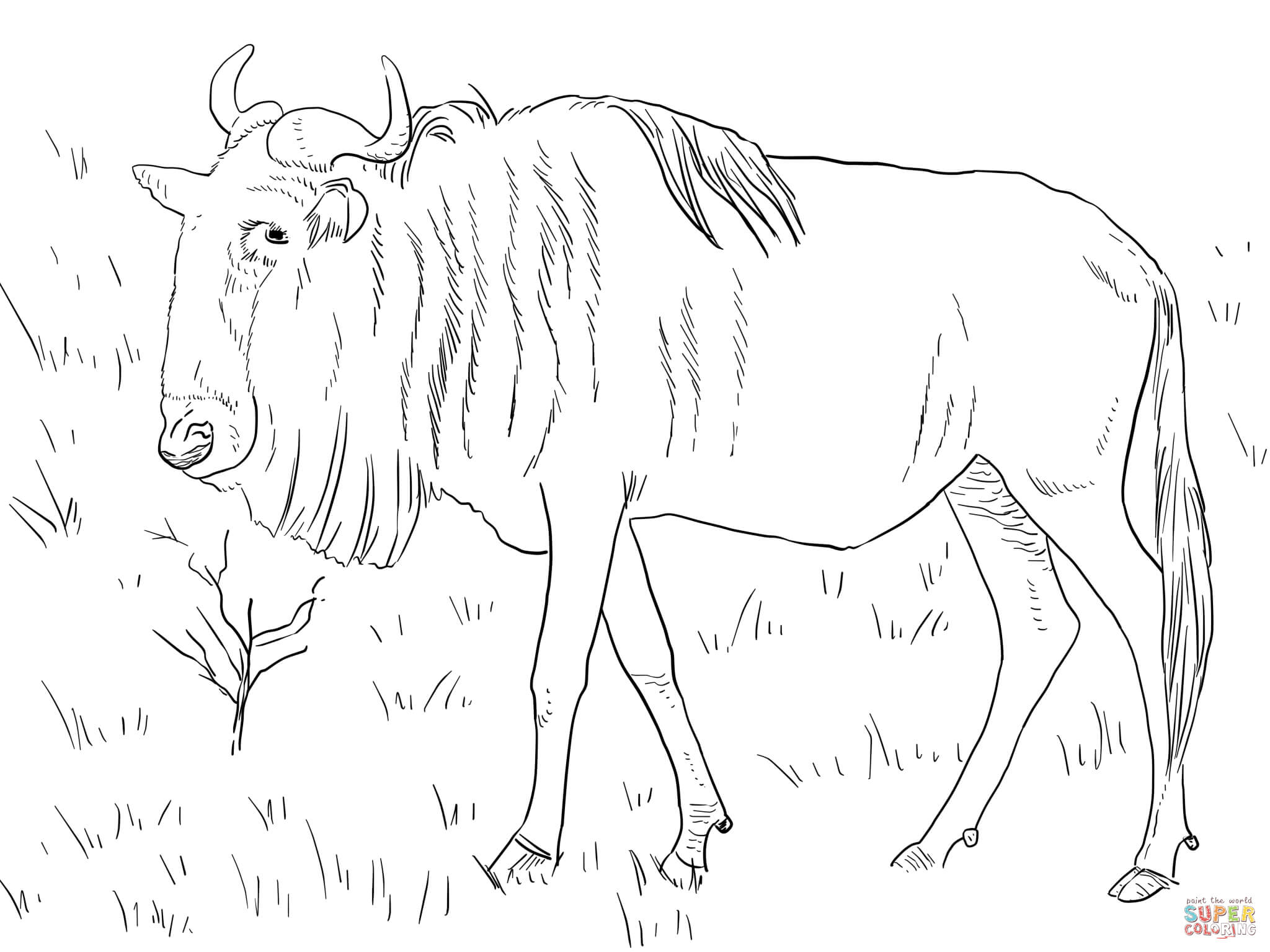 wildebeest coloring page coloring page wildebeest coloring page wildebeest