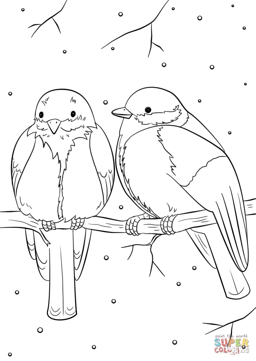 winter animal coloring sheets winter bird coloring pages download and print for free sheets animal winter coloring