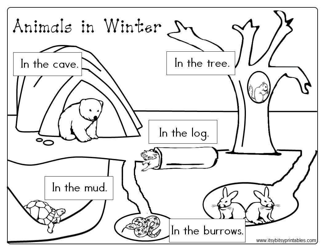 winter animal coloring sheets winter scenes with cute animals coloring page free coloring sheets animal winter