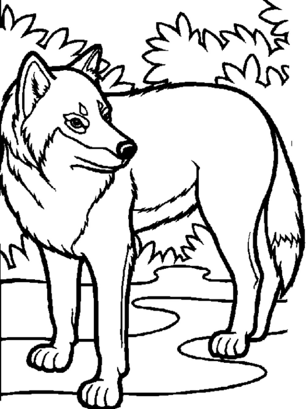 wolf coloring images print download wolf coloring pages theme wolf coloring images 1 1