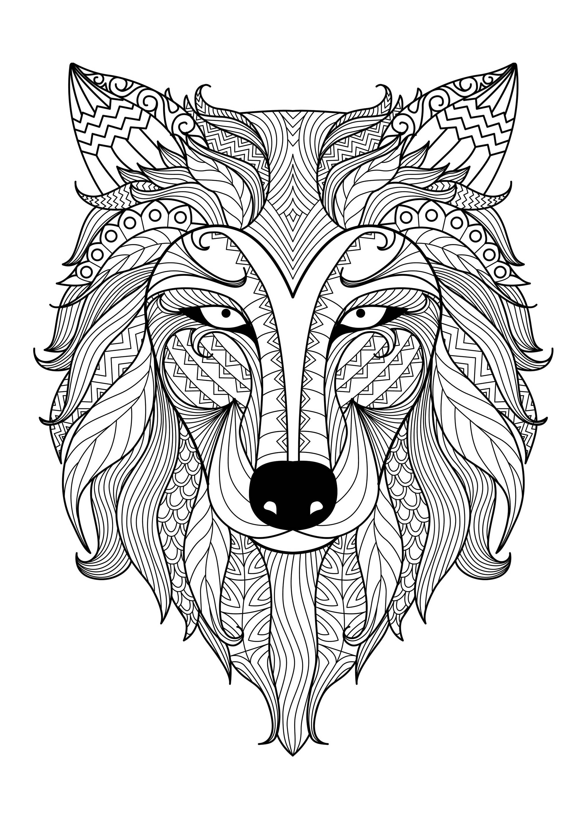 Wolf coloring images