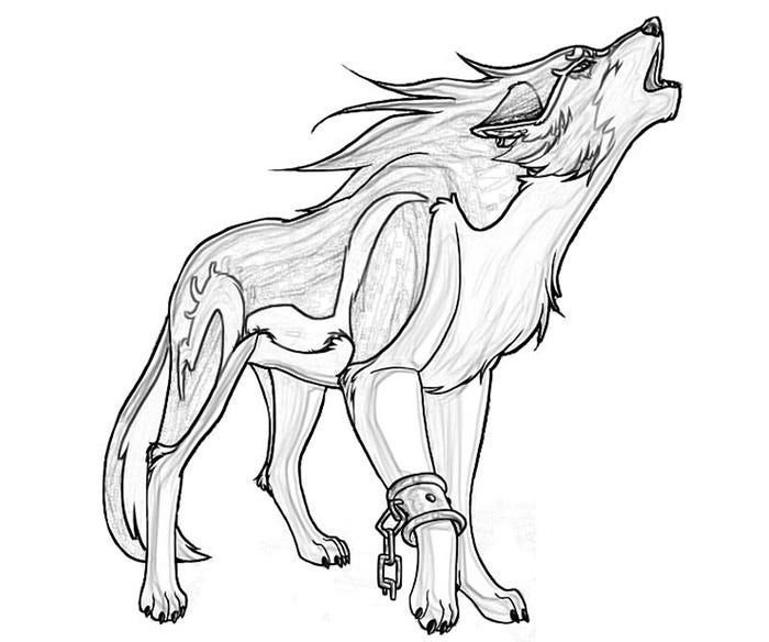 wolf for coloring 20 awesome baby wolf coloring pages printable wolf for coloring