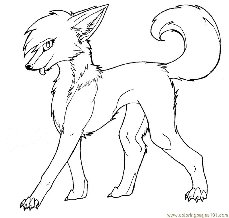 wolf for coloring print download wolf coloring pages theme coloring wolf for 1 1