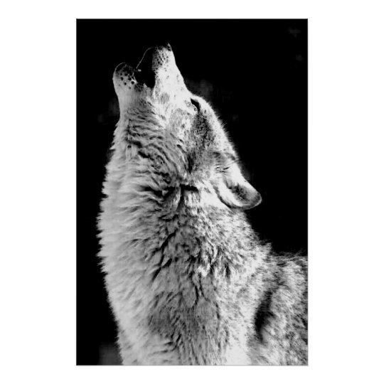 wolf pictures to print free printable wolf coloring pages for kids animal place wolf pictures print to