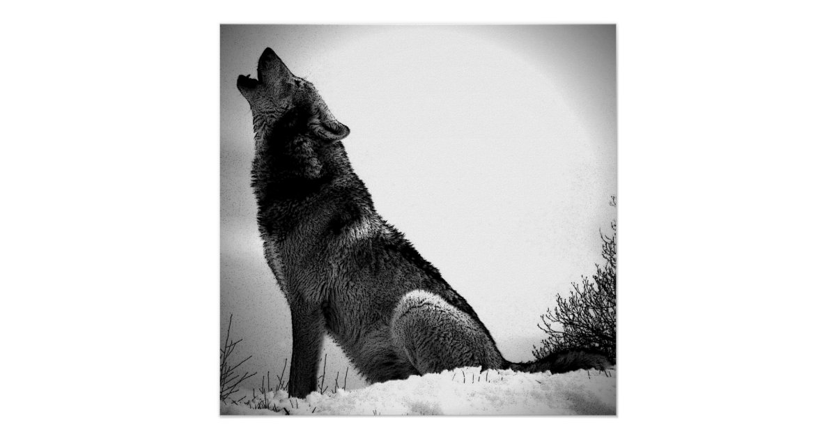 wolf pictures to print realistic wolf coloring pages to print coloring home wolf pictures to print