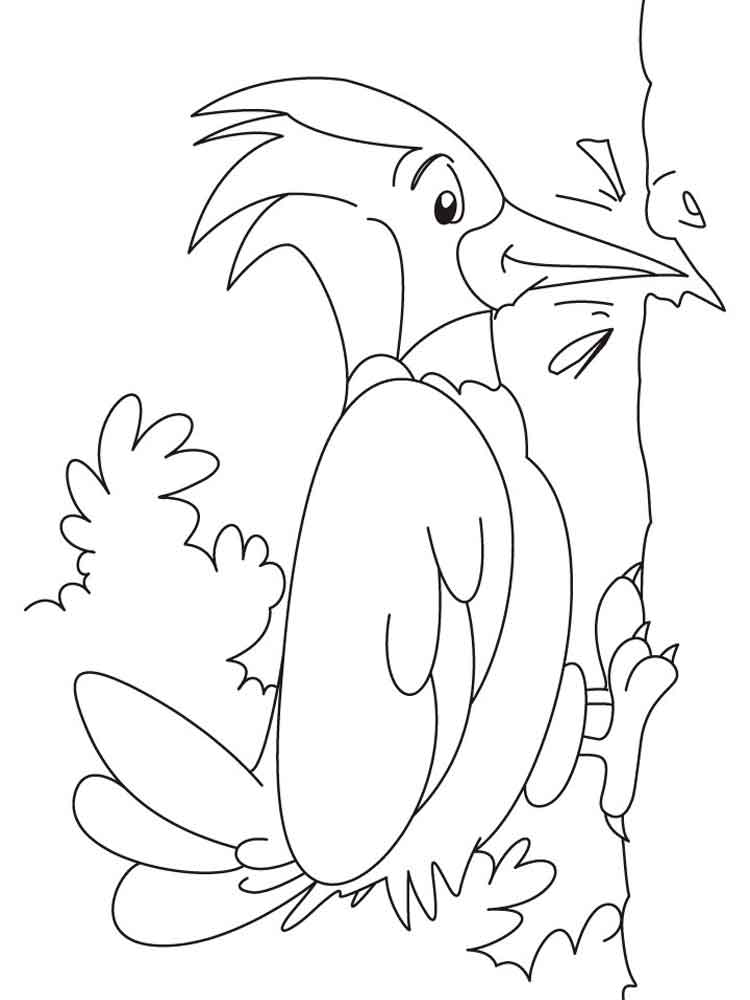 woodpecker coloring page pileated woodpecker coloring page free printable coloring woodpecker page