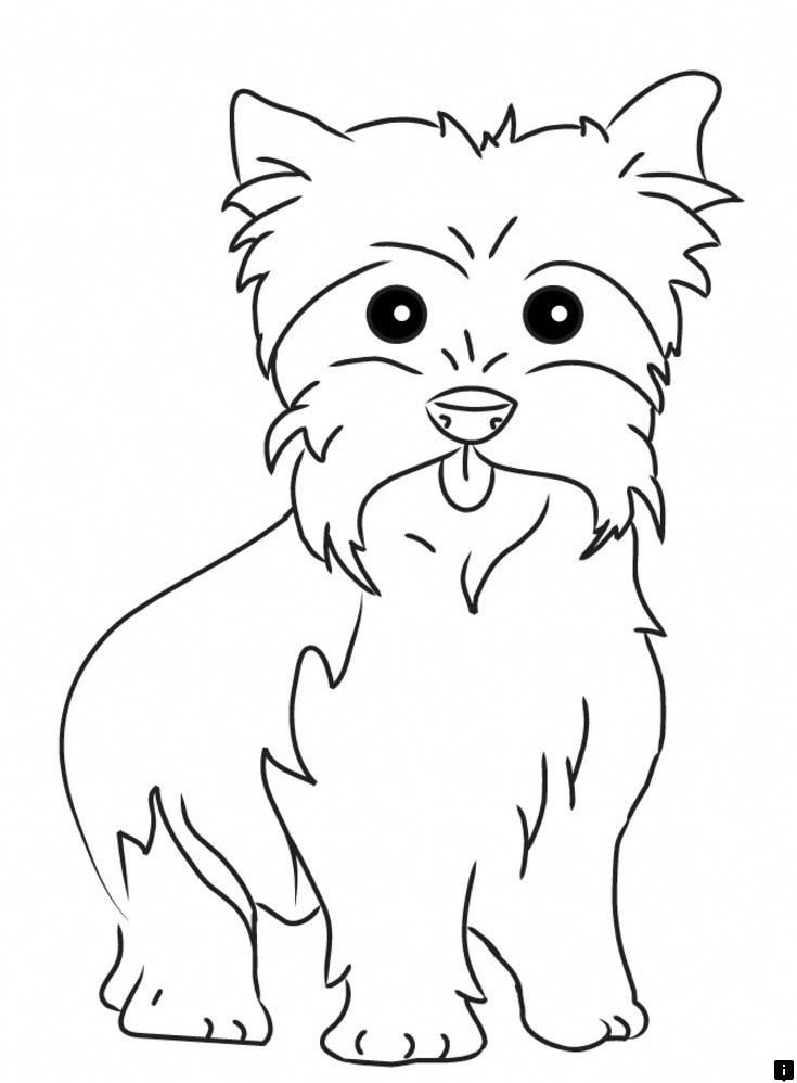 yorkie puppy coloring pages check out the webpage to learn more on maltese dog pages coloring puppy yorkie