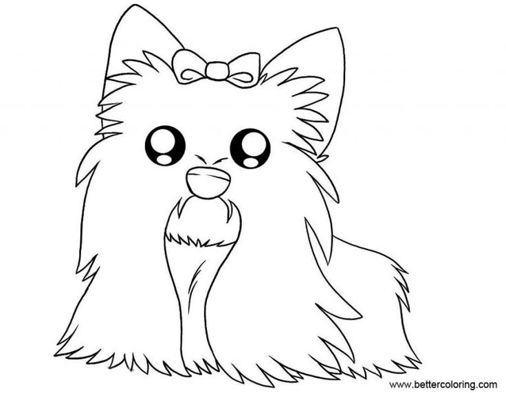 yorkie puppy coloring pages free yorkie puppy coloring pages yorkie coloring pages yorkie coloring pages puppy