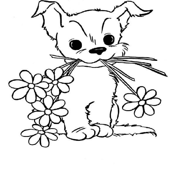 yorkie puppy coloring pages yorkie coloring pages coloring pages pages yorkie coloring puppy