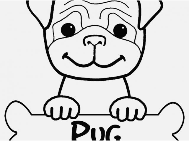 yorkie puppy coloring pages yorkie dog coloring pages at getdrawings free download pages yorkie puppy coloring