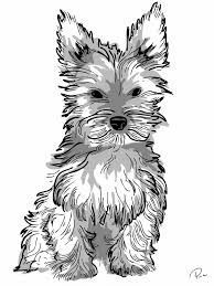 yorkie puppy coloring pages yorkie love yorkieadult dog coloring page dog coloring yorkie pages puppy coloring